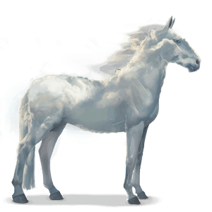 water horse cloud